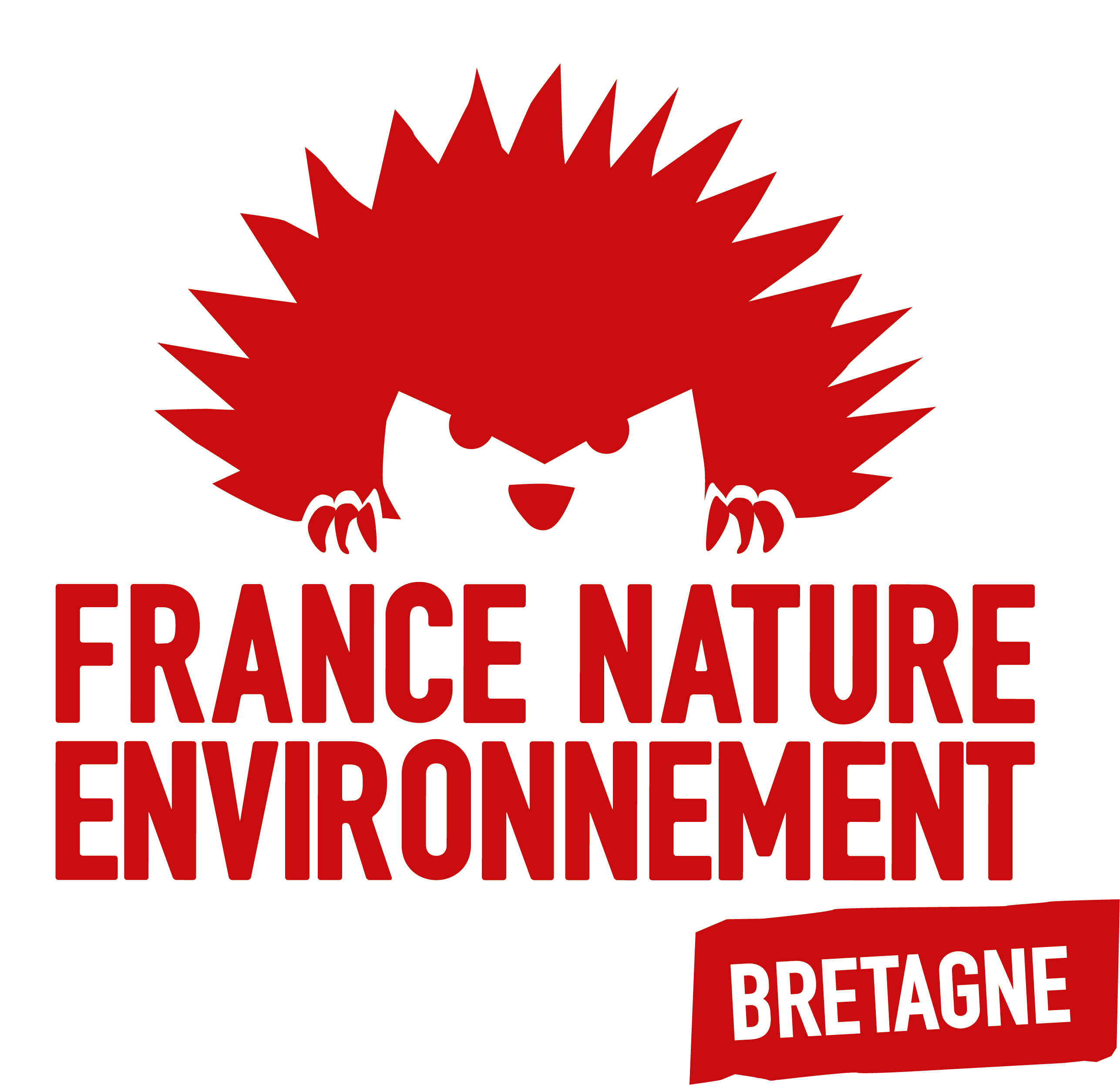 logo FNE-Bretagne carré